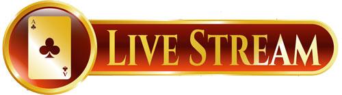 Live Stream Schriftzug