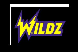 Wildz Logo 300x200