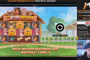 CasinoMoLive The Dog House Vorschau