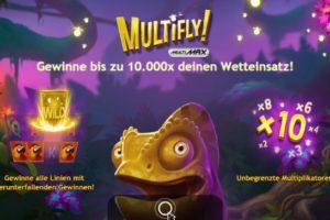 MultiFly Vorschau Bonus