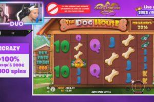 Duooff The Dog House Vorschau