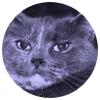 Jarttu84 Twitch Logo
