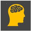 Wissen Icon