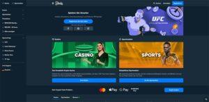 Vorschaubild der Stake Casino Startseite