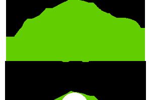 Das Logo der Gamdom Zahlungsmethode Trustly