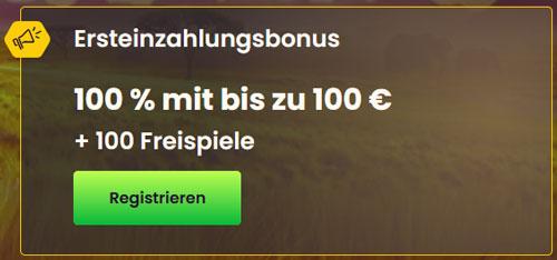 Bizzo Bonus